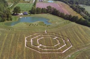 corn maze aerial view